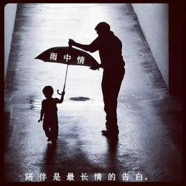 straight umbrella factory